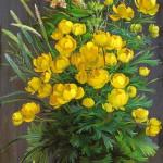 """""""Весна пришла"""" - х.м. (100х35) - 2013 г"""
